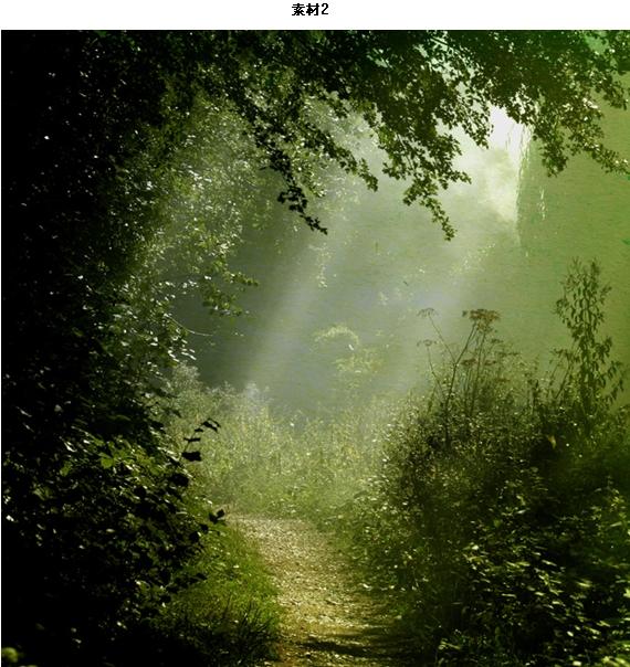 经典合成:森林里的光照效果