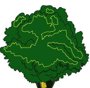 画中的矢量大树图