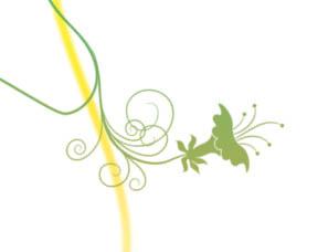 插画培训 ps制作漂亮的艺术曲线插画教程